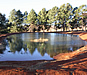 Trout fishing Dullstroom and Lydenburg area